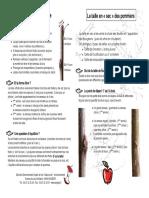 conseil_taille.pdf
