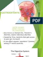 Gastroenteritis case report