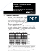 RNAlater RNA Stabilization Solution Qiagen