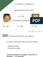 31081194 Fendas Labio Palatinas