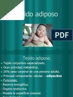 Clase 7 pptx (1)