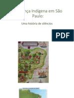 Presença Indígena Em São Paulo