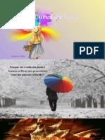 Cores Da Vida- Biajova Slides