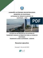 Resumen ejecutivo AEROVÍA.pdf