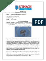 Cultivo de Plancton Cultivo de Artemia Sp RC11 Ppp