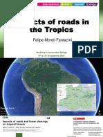 Fantacini, F. Impacts of roads..pptx
