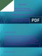 proyecto de aula los guardianes del arroyo.pptx