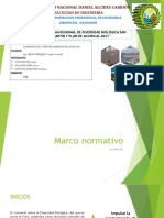 7. Estrategia Regional de Db San Martin