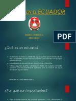Estuarios Presentacion PDF