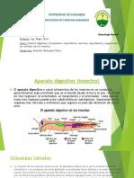 artropodos-110217100720-phpapp01