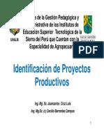 Exposicion 2-Identificacion Proyectos Productivos [Modo de c