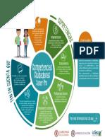 Infografia de Competencias Ciudadanas Saber Pro