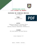 Prostatitis.docx