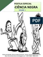APOSTILA ESPECIAL CONSCIÊNCIA NEGRA VOLUME 1 (1).pdf