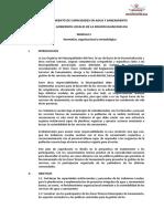 PLAN DE CAPACITACION MODULO I.doc