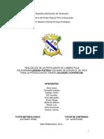 Proyecto de Fertilizantes (1)