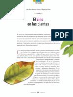 Zinc Plantas
