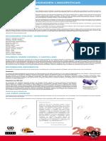 panel_sobre_curiosidades_linguisticas_web.pdf