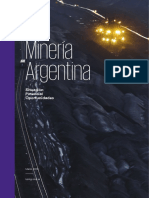 Mineria Argentina