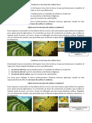Andenes O Terrazas De Cultivo Inca Imperio Inca Agricultura