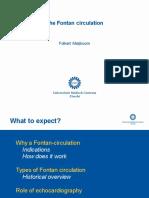 TH 13 F Meijboom Fontan circulation.pdf