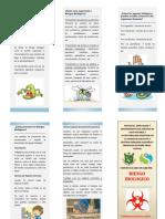 TRIPTICO RIESGO BIOLOGICO.docx
