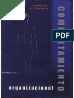 Manejo de Equipos. Comportamiento Organizacional - Don Hellriegel John W. Slocum (1)