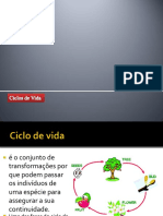 ppt18-ciclosdevida-2.docx