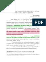 APLICANDO A FENOMENOLOGIA DE INGARDEN