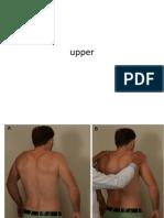 Upper Limb Neuro Exam