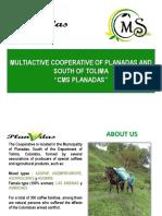 Presentación CMS Planadas Colombia - V. Inglés