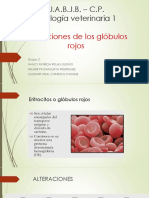 alteraciones de eritrocitos.pptx