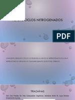 Heterociclos Nitrogenados