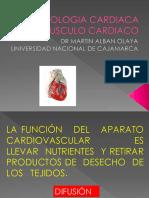 FISOLOGIA CARDIACA