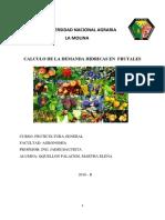 Calculo de La Demanda Hídrica en Frutales (1) (Autoguardado)