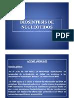 Clase Biosíntesis de nucleotidos - Oscar Sosa