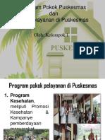 301943517 Program Pokok Pelayanan Di Puskesmas