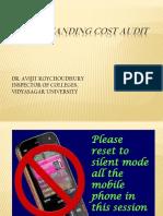 Understanding Cost Audit