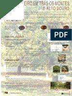 castanheiro202.pdf