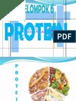 Protein Ilmu Gizi