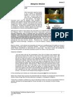 Annex 3. Metaphor Module Iss7