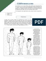 Como Dibujar Una Figura Masculina