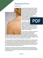 Acupuncture Regenerates Nerves