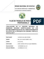 PLAN-DE-TRABAJO-PPP.docx