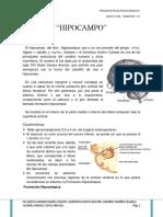 Resumen Hipocampo 110608202443 Phpapp02