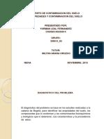 Trabajo Definitivo Final de Propiedades y Contaminacion de Suelos