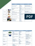 110967817-Cuadro-Comparativo-de-Organelos.docx