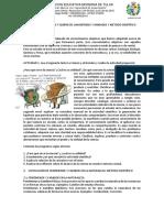 Taller 1. Ciencia, Cambios Físicos y Químicos, Método Científico