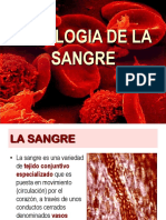 fisiologia de sangre