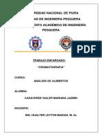 CROMATOGRAFIA_EN_CAPA_FINA_A_ANALISIS.docx